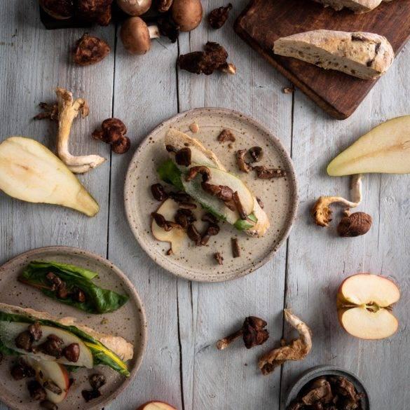 Caption of Autumnal Mushrooms. Image by Edward Daniel (c).